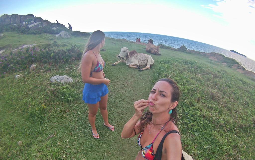 guarda do embau, santa catarina, floripa, floripa praias, o que fazer em florianopolis, praia do rosa onde fica, blog de surf, surf em floripa