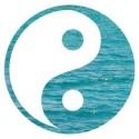 espaço sattwa, acupuntura, tudo sobre acupuntura, acupuntura na moca