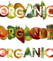 comida orgânica em são paulo