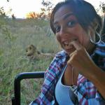 africa do sul, africa do sul dicas, o que  fazer na africa do sul, safari na africa do sul